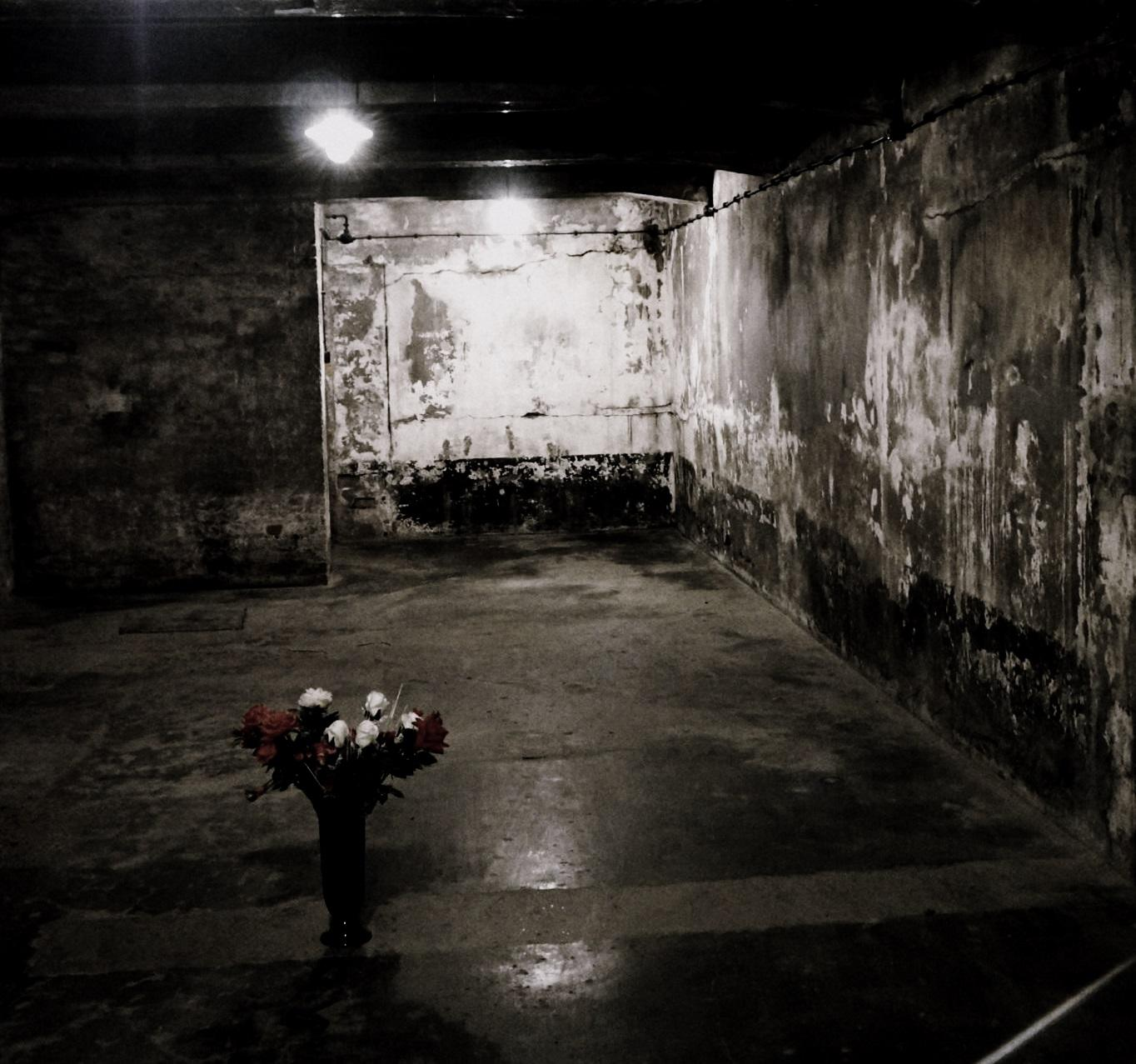 Flowers left in a gas chamber at Auschwitz.