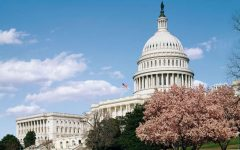 The U.S. Capitol is a cherished symbol of what the country represents.